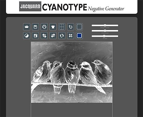 cyanotype-site.jpg